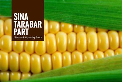 Sina Tarabar Part Co.